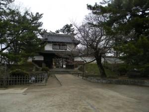1櫓門と桜