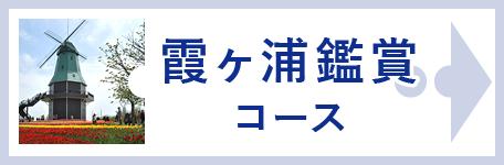 霞ヶ浦鑑賞コース