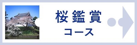桜鑑賞コース